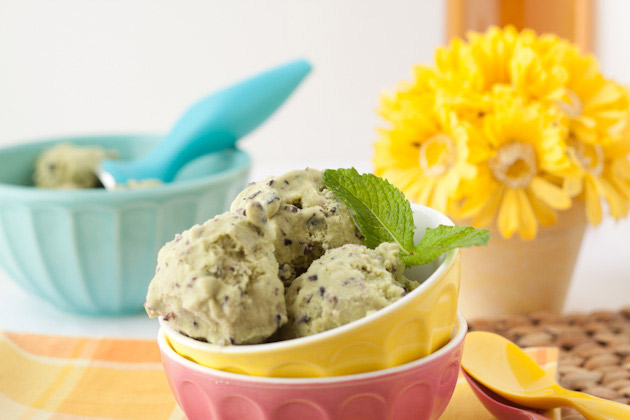 Vegan Peppermint Chocolate Chip Ice Cream | Healthful Pursuit