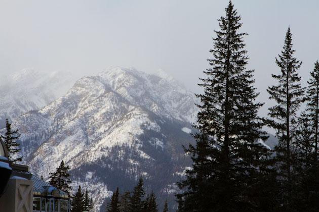 Calgary_Dec2012 (111)