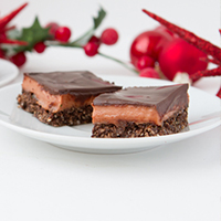 Chocolate Covered Cranberry Bars