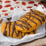 Pumpkin Chocolate Protein Bars