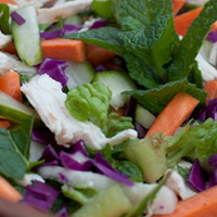 Guest Post with Laurel of Leaves: Lime & Mint Chicken Coleslaw