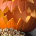 pumpkinTHUMB
