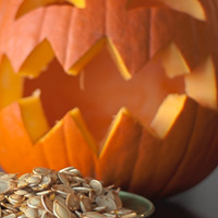 Pumpkin & squash seeds