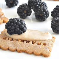 Guest Post with Spabettie: Blackberry Crackers