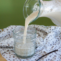 How to Make Sunflower Seed Milk