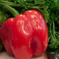 veggiesTHUMB