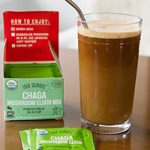 Chilled Chaga Keto Coffee (paleo + vegan) Preview