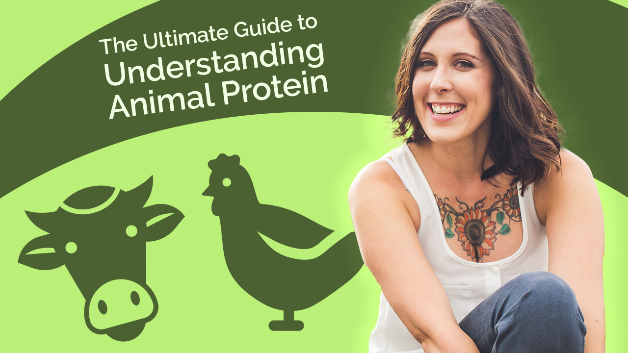 The Ultimate Guide to Understanding Animal Protein