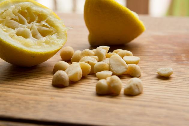 Macadamia Nut Hummus-9217