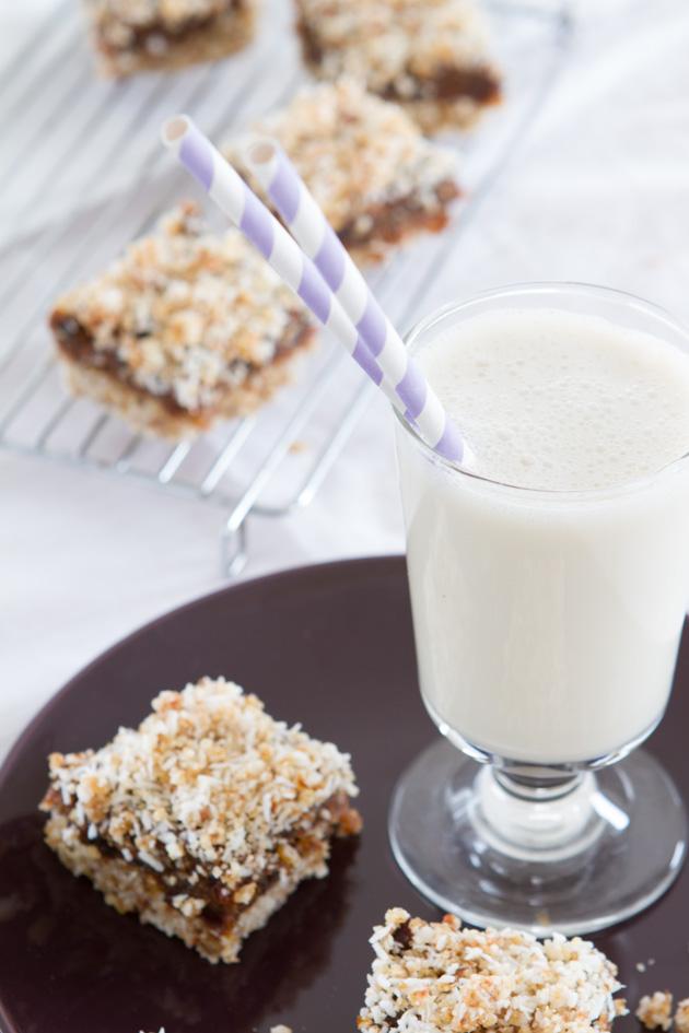No bake Paleo + Vegan Date Squares