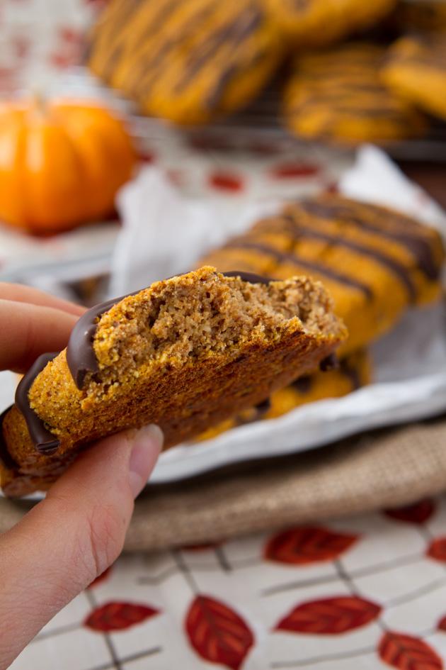 Oil-free Chocolate Pumpkin Protein Bars